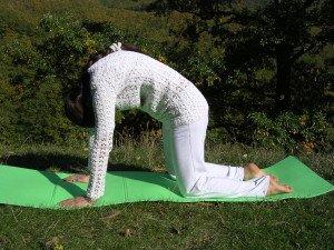 Una posizione yoga per rigenerare fegato e milza