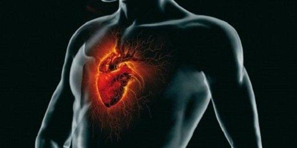 Ecco come ritrovare benessere, chiarezza e buone idee grazie al potere del cuore