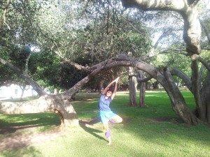 La posizione dell'albero, variante, benefici e indicazioni